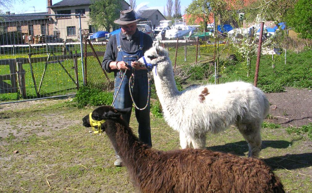 Bauernhofurlaub Rügen Tiere